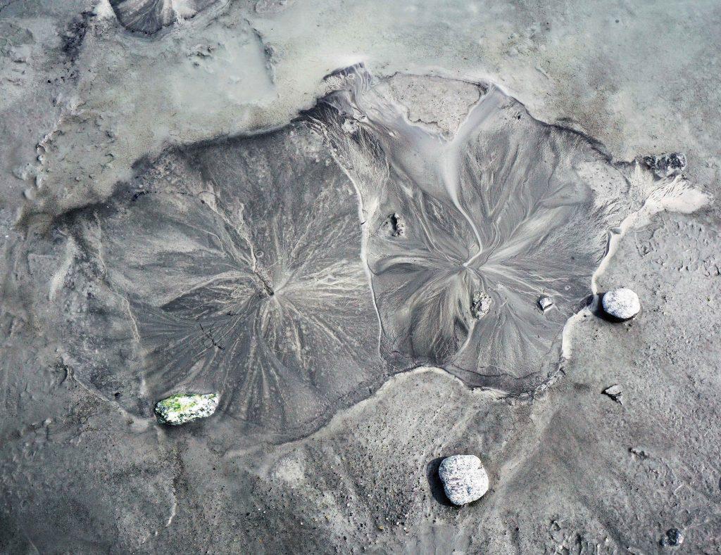 Matanuska Glacier mud blooms, Zealandia Designs