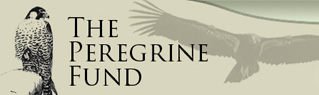 Peregrine Fund