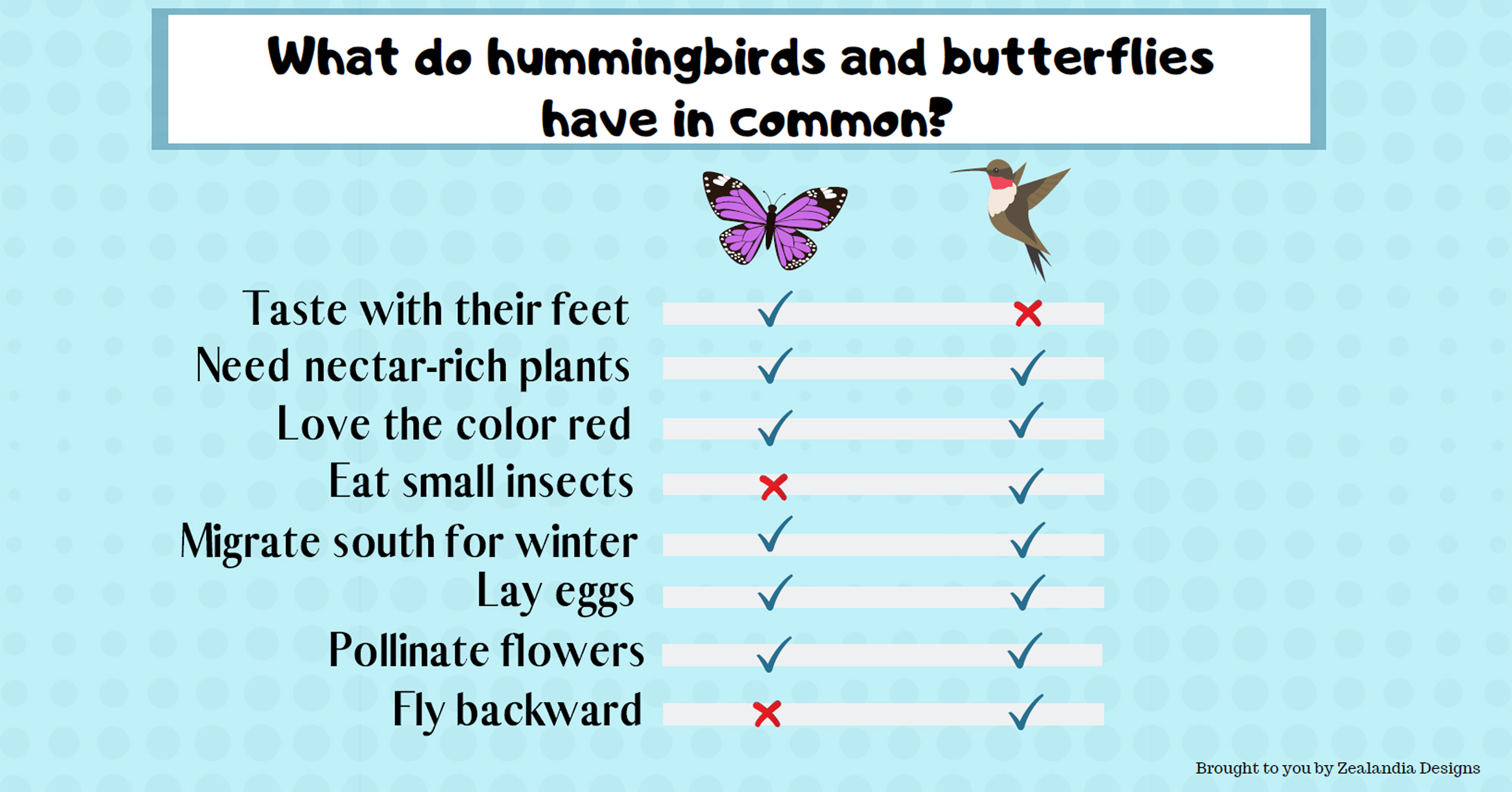 Hummingbirds and Butterflies have in common
